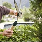 Landscaper Hourly Rate