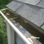 All Star Seamless Gutter Cover Photo