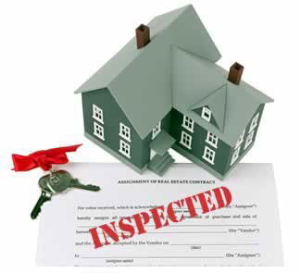 Nueva Vista Home Inspection Logo