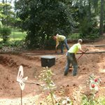 Precision Lawn & Tree Care/Plt Contracting Cover Photo
