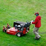 Grass Lawn Care Services Logo