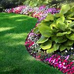 Steven Robison Lawn Maintenance Inc Cover Photo