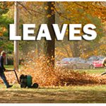 Evys Lawn Care Cover Photo