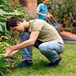 Coastal Lawn Care/landscaping Logo