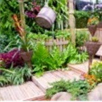 Tropical Landscaping Cover Photo