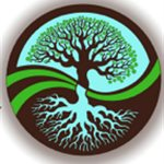 Asian Garden and Irrigation By Design Logo