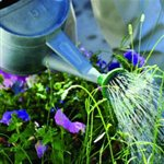A-iveys Landscape & Lawn Service Cover Photo