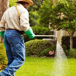 Professional Lawn Care Contractors Logo