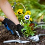 Going Green Lawn and Landscaping LLC Cover Photo
