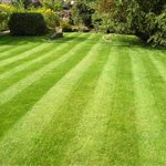 Even Cut Lawn & More LLC Logo