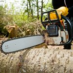 Bill Robinson Tree Service Inc Cover Photo
