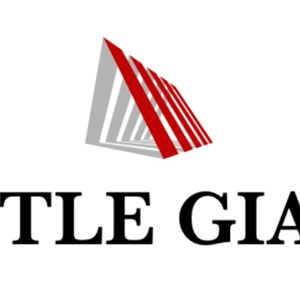 Little Giant Handyman Solutions Logo