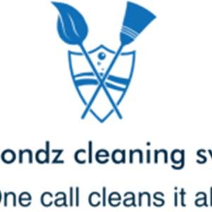 Diamondzcleaning Service LLC Logo