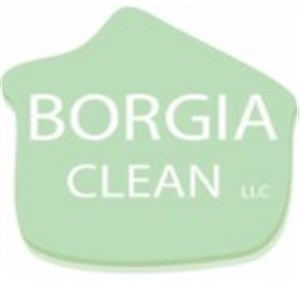 Borgia Clean Llc  Logo