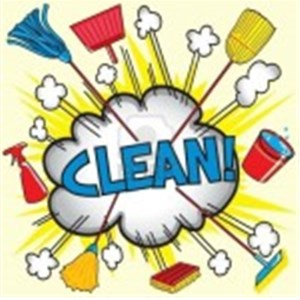 Brazican Cleaning Service Logo