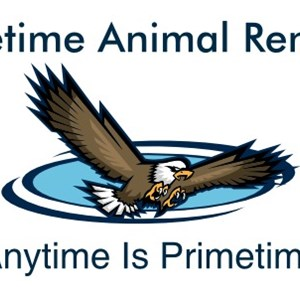 Primetime Animal Removal Logo