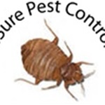 4 Sure Pest Control Logo