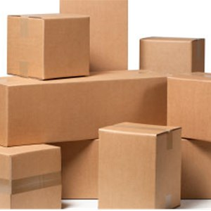 Professional Moving & Packing Services Logo