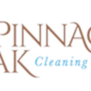 Pinnacle Peak Cleaning Services, LLC Logo