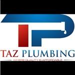 Taz Plumbing Cover Photo