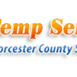 Air Temperature Service Logo