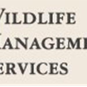 What is Termite Contractors Logo