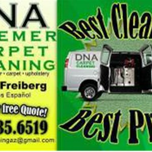 Dna Steemer Carpet Cleaning Logo