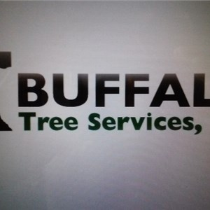 Buffalo Tree Services, Llc. Logo