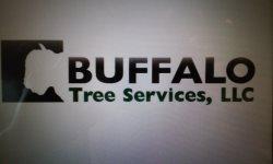 Buffalo Tree Services, Llc. Logo