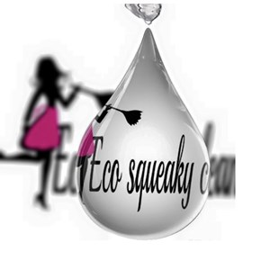 Eco-squeaky Clean Logo