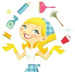 Home Clean USA Logo