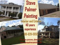Steve Palmer Painting Logo
