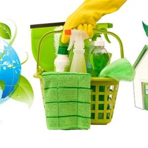 Deann Divine Cleaning Logo