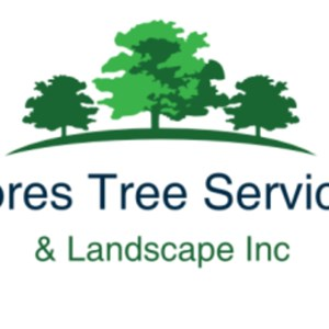 Flores Tree Service and Landscaping Inc Logo