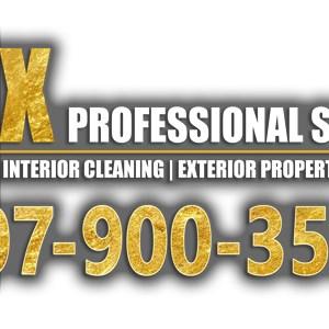 Inex Professional Services Logo