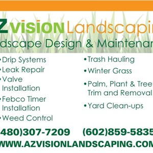 Arizona Vision Landscaping Logo