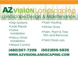 Arizona Vision Landscaping Logo