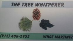 Tree Whisperer Logo