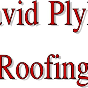 David Plyler Roofing Logo