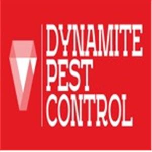 Dynamite Pest Control  Logo