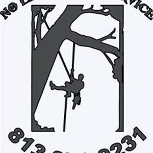No Limits Tree Service Logo