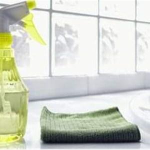 Reyes Natural Cleaning Logo
