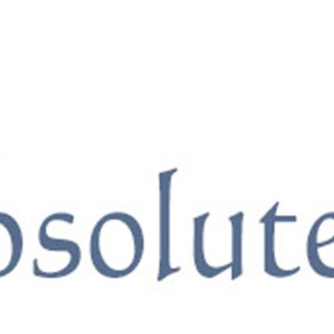 Absolute Painting Inc Logo