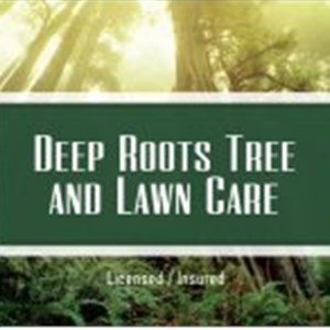 Deep Roots Tree And Lawn Care Logo