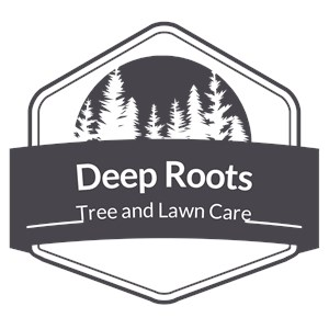 Deep Roots Tree And Lawn Care LLC Logo