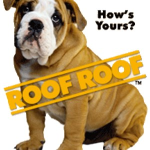roof roof Logo