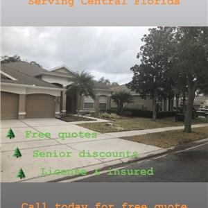 Enterprise Outdoors & Tree Removal Logo