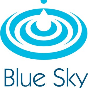 Blue Sky Paint Works Logo