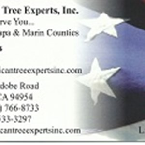 American Tree Experts, Inc. Cover Photo