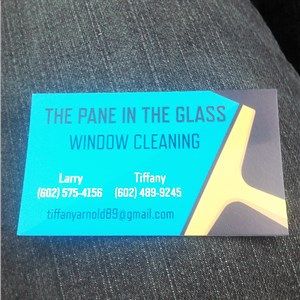 The Pane In The Glass Window Cleaning Logo
